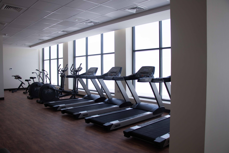 wasl oasis III - Gym
